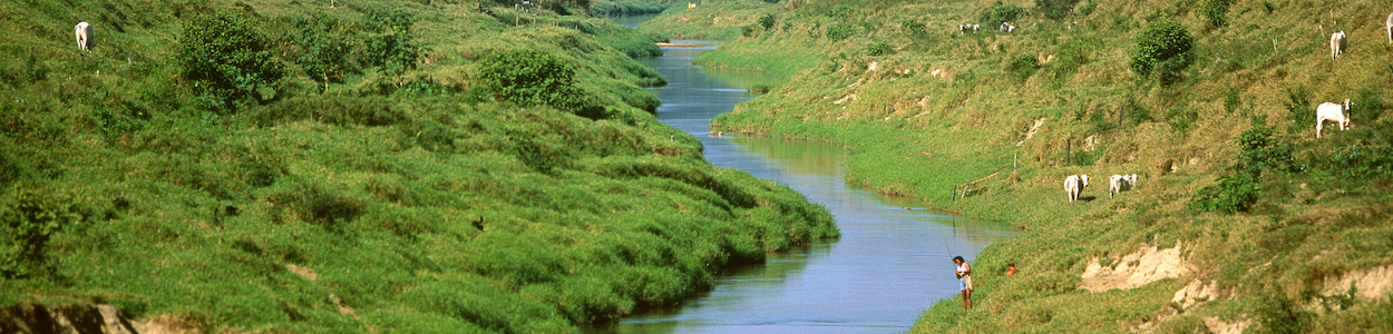 river meandering through a shallow valley